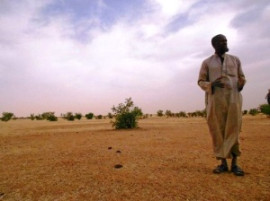 Mauritanie Decembre 11